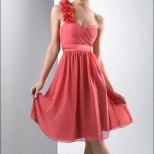 Women dress by Bari Jay size 12 coral new